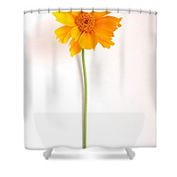 Simply Sunny Shower Curtain
