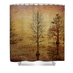 Simply Trees Shower Curtain by Carolyn Dalessandro