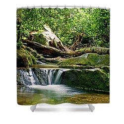 Sims Creek Waterfall Shower Curtain by Meta Gatschenberger