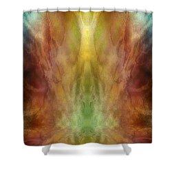 Simultaneous Climax Shower Curtain