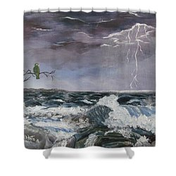 Sin Temor Shower Curtain