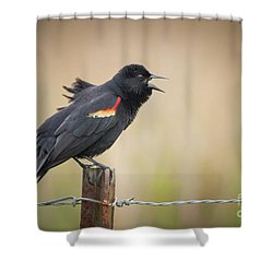 Sing A Little Song Shower Curtain
