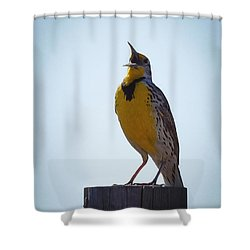 Sing Me A Song Shower Curtain by Ernie Echols