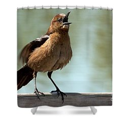 Sing Out Loud Shower Curtain