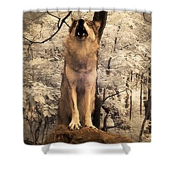 Singing A Soulful Tune Shower Curtain by William Fields