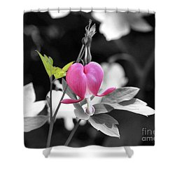Single Bleeding Heart Partial Shower Curtain