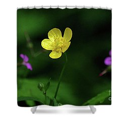 Single Buttercup Two Stinky Bob Shower Curtain