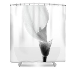 Single Cala Black And White Shower Curtain by Rebecca Cozart
