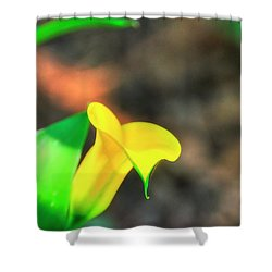 Shower Curtain featuring the photograph Single Calla Lily by Jerry Sodorff