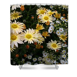 Shower Curtain featuring the photograph Single Chrysanthemums by Kathryn Meyer