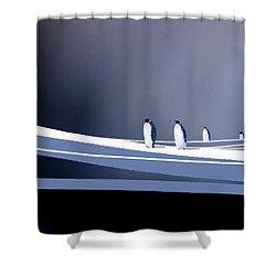 Single File Shower Curtain by Paul Sachtleben