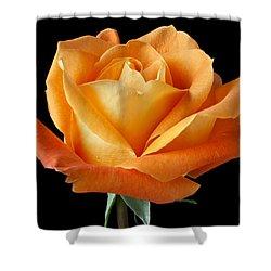 Single Orange Rose Shower Curtain by Garry Gay