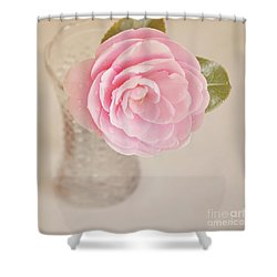 Shower Curtain featuring the photograph Single Pink Camelia Flower In Clear Vase by Lyn Randle