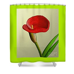 Single Pose Shower Curtain
