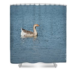 Single Swimmer Shower Curtain