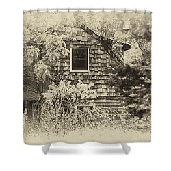 Single View Shower Curtain by Tamera James