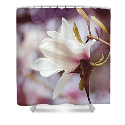 Single White Magnolia Shower Curtain