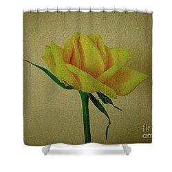 Single Yellow Rose Shower Curtain