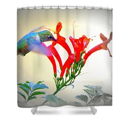 Sipping The Nectar Shower Curtain