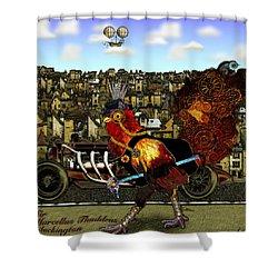 Sir Marcellus Thaddeus Cluckington Shower Curtain by Iowan Stone-Flowers