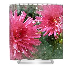 Sisters 2 A Shower Curtain