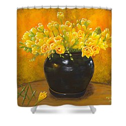 A Gift From The Past Shower Curtain