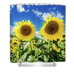 Shower Curtain featuring the photograph Sisters by Greg Fortier