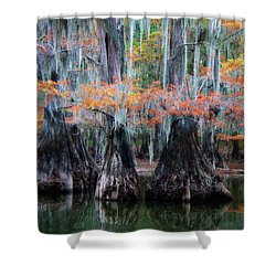 Sisters Wading Shower Curtain