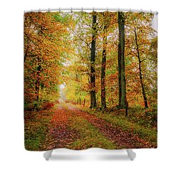 Shower Curtain featuring the photograph Site 6 by Dmytro Korol