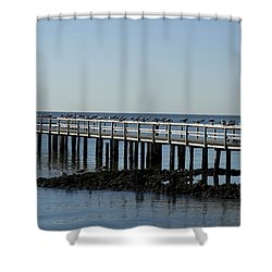Sittin' On The Dock By The Bay Shower Curtain