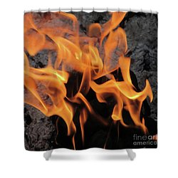 Sitting By The Crackling Fire Shower Curtain
