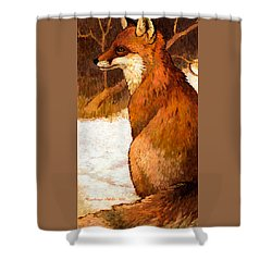 Sitting Fox Shower Curtain