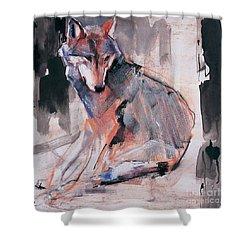 Sitting Wolf Shower Curtain