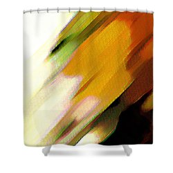 Shower Curtain featuring the painting Sivilia 2 Abstract by Donna Corless
