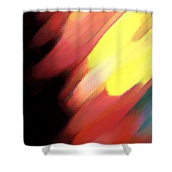 Shower Curtain featuring the painting Sivilia 9 Abstract by Donna Corless