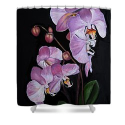 Six Orchids Shower Curtain