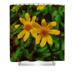 Sixteen Petals  Two Yellow Wildflowers Shower Curtain by Michael Flood