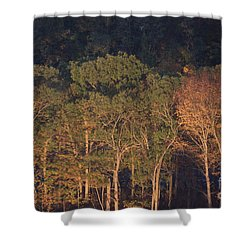 Shower Curtain featuring the photograph Sixteen Stories Up by Steven Macanka