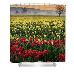 Shower Curtain featuring the photograph Skagit Valley Misty Morning by Dan Mihai