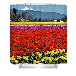 Skagit Valley Tulip Fields Shower Curtain