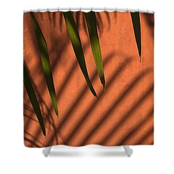 Skc 5521 Stripes Shower Curtain by Sunil Kapadia
