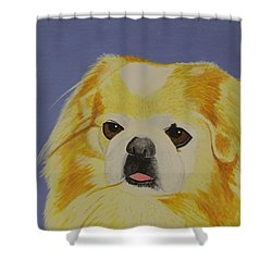 Skeeter The Peke Shower Curtain