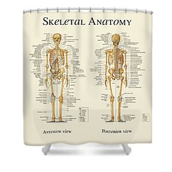 Skeletal Anatomy Shower Curtain by Gina Dsgn