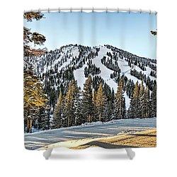 Ski Runs Shower Curtain