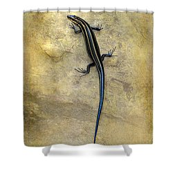 Skink Shower Curtain