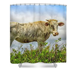 Skinny Cow Shower Curtain
