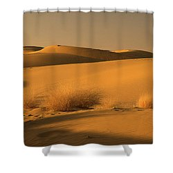 Skn 1124 The Desert Landscape Shower Curtain by Sunil Kapadia