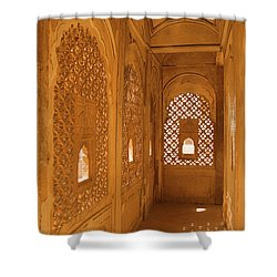 Skn 1241 Carved Niche Shower Curtain by Sunil Kapadia