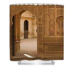 Skn 1317 Threshold Of Carvings Shower Curtain