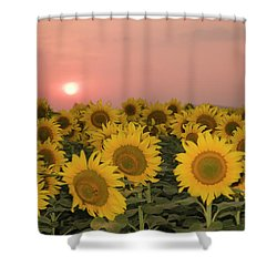Skn 2179 Sunflower Landscape Shower Curtain